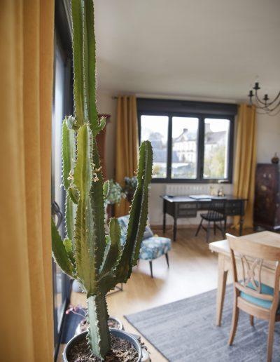 Décoration d'un salon-salle à manger à Caen - Cactus avec vue sur le coin bureau, par CREA DECO, Décoratrice UFDI à Honfleur, Deauville, Caen - 14